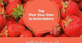 PYO, strawberry, oxfordshire