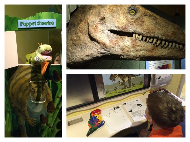 dinosaur, museum, woodstock, oxfordshire museum