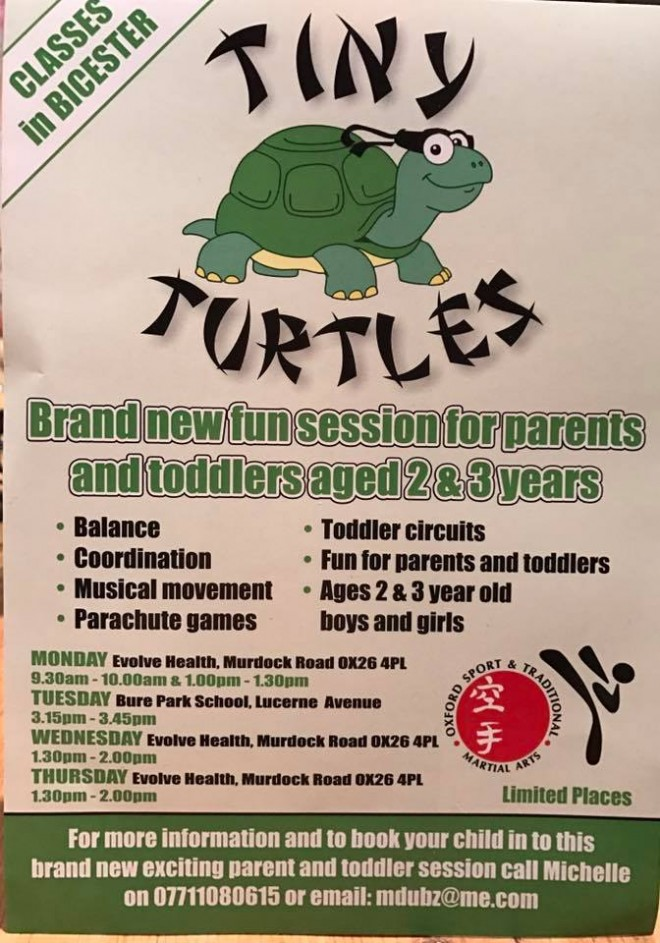 tiny turtles, martial arts, kids, bicester
