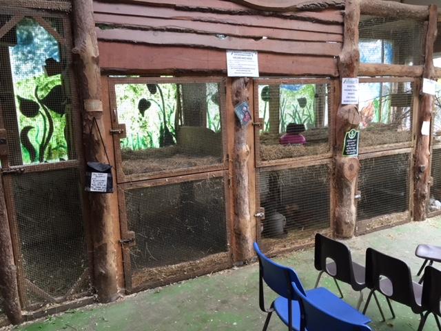 waterfowl sanctuary, banbury farm park oxfordshire