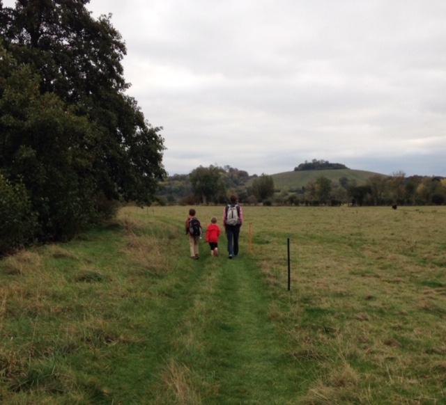wittenham clumps thames path walk