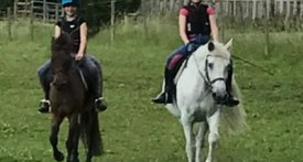 horse riding lessons witney