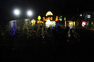 christmas lights chipping norton, fairytale farm illuminations