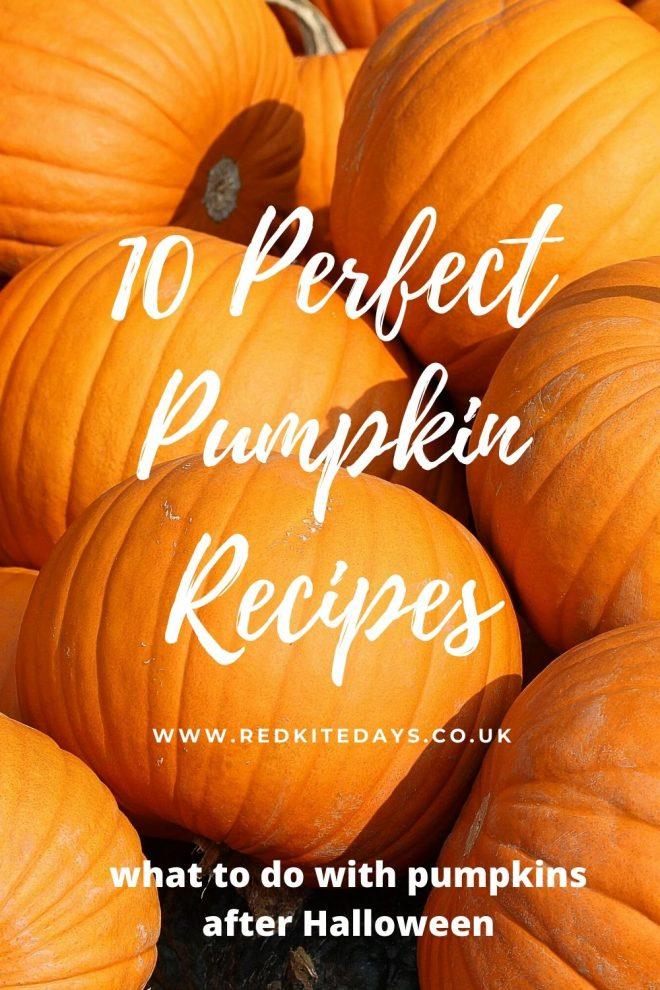 pumpkin recipes, pumpkin pie, halloween pumpkin recipe