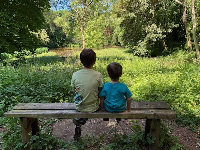 wychwood wild garden, diggers wood, things to do in shipton under wychwood, free walks with kids