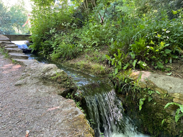 wychwood wild garden, diggers wood, things to do in shipton under wychwood, free walks with kids, waterfall oxfordshire
