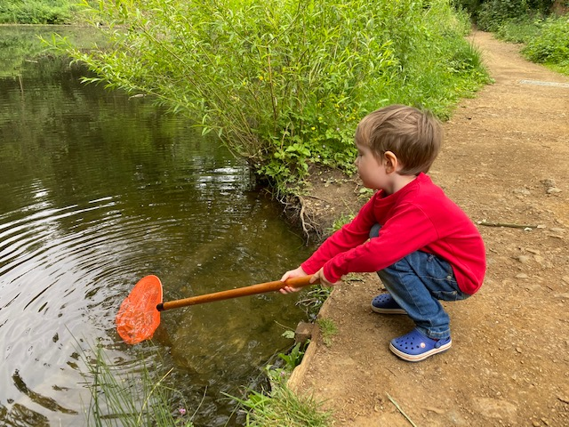 CS Lewis Nature Reserve, CS Lewis Nature Reserve Oxford, pond dipping with kids