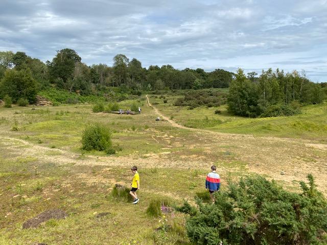 hitchcopse pit, hitchcopse pit nature reserve, nature reserve oxford, nature reserve abingdon