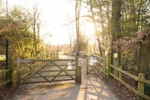 chalfont, Amersham, nature, toddler, walk