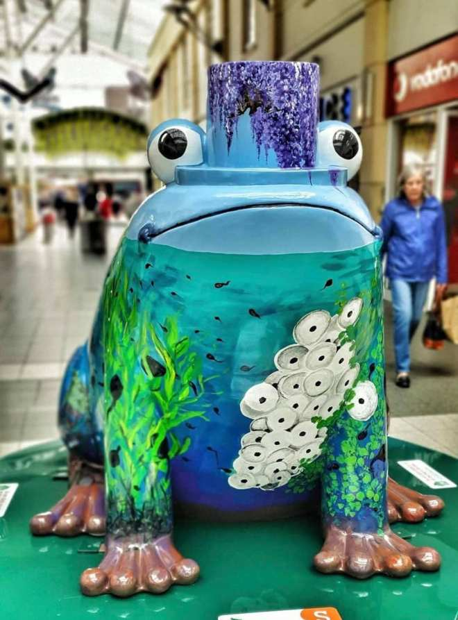 stockport frogs, stockport art trail, whats on for kids stockport