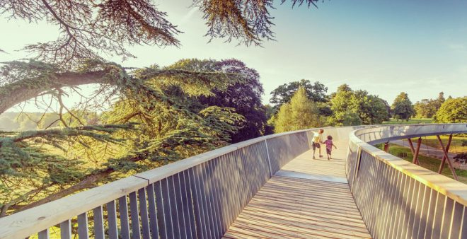 Westonbirth Arboretum, largest arboretum uk, sky walkway