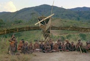 "A ""cargo cult"" ..build it and they will come?"