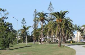 Kinsale Court Park is a popular recreation area