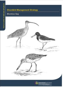 The Queensland Government's Shorebird Management Strategy Moreton Bay