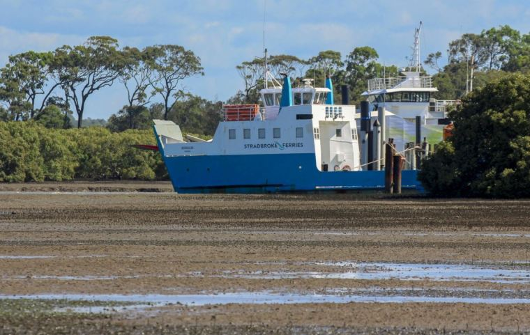 Toondah Harbour tidal flats Photo Melleah Mewett
