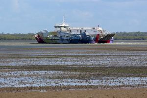 Toondah Harbour tidal flats Photo: Mealeah Mewett