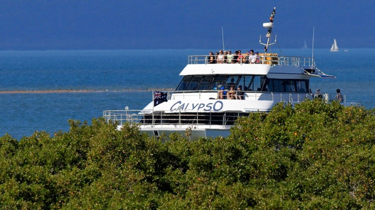 "Stradbroke Flyer ""Calypso"" passing mangroves at the entrance to Toondah Harbour"