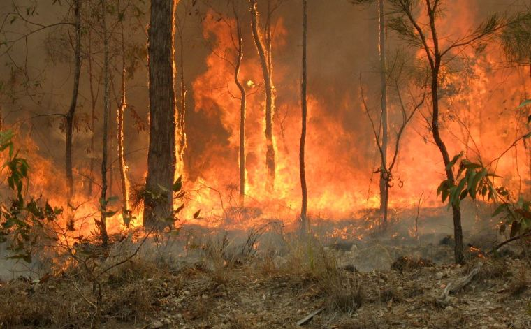 The Queensland Fire and Emergency Services Commissioner says that mainland Redland City does not need a Rural Fire Brigade.