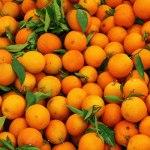 orange fruit for collagen boost