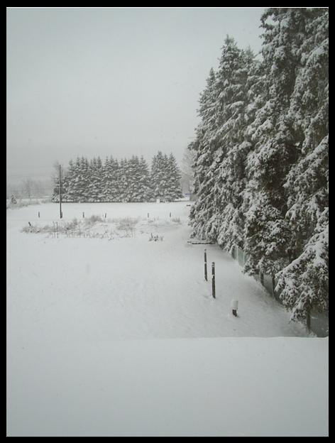 backlot winter