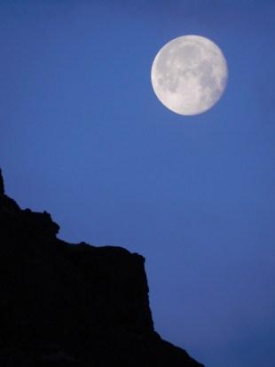 242-moon