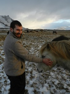 387-more-horses