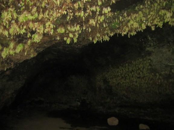 72-steinahellir-cave