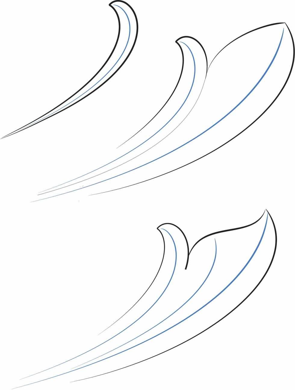 Skeletal-Leaf-development-pg-1