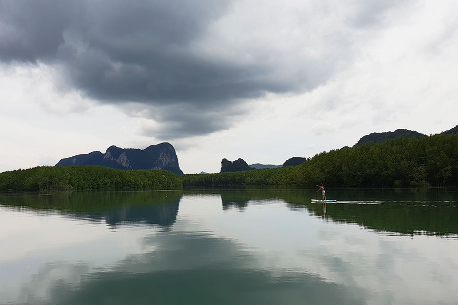 cloudy skies and reflection of mangroves in Thailand
