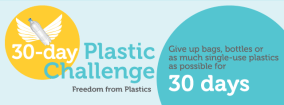 30-day-plastic-challenge2