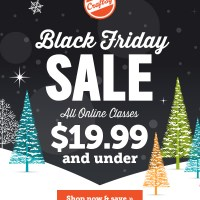 Black Friday through Cyber Monday - all classes are $19.99 or less