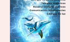 Consciencia Corazones Oceánicos