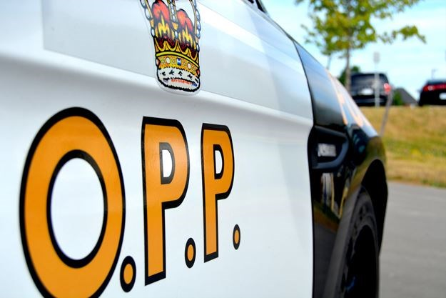 Woman, 60, Arrested at Logging Road Blockade: OPP