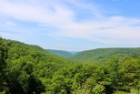 Pleasant Stream Valley