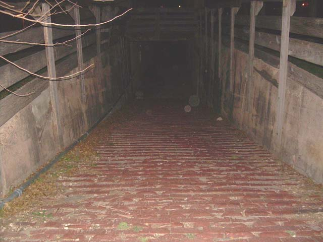 """""""Orbs"""" (either disembodied spirits or dust balls) at the animal loading ramp in the Fort Worth Stockyards."""