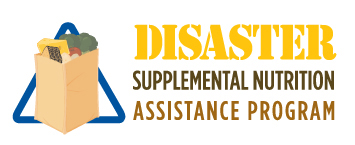 RRPJ-DCFS DisasterLogo-17Jun9