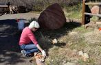 Joan cleans up a section of the lower garden bed, March 28, 2015.