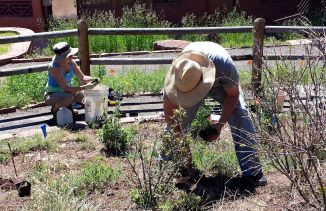 Joan and Cy working on the new plantings, June 6, 2015.
