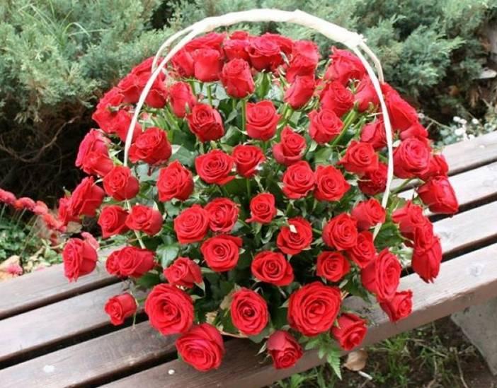 Korpa 101 ruža 3