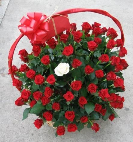 Korpa 101 ruža 9