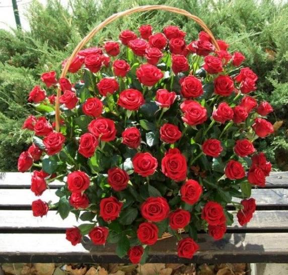 Korpa 101 ruža 13