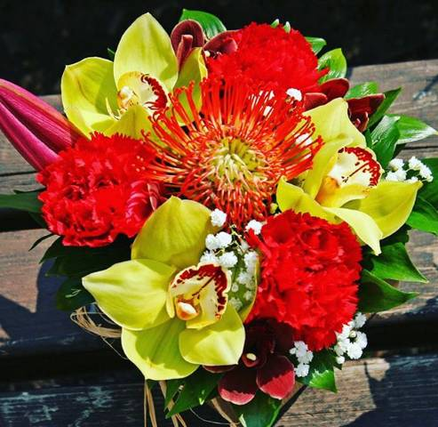 FLOWERBOX 48