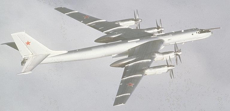 Bear-F-DN-ST-86-11171