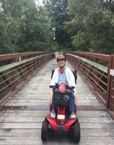 Several wooden bridges