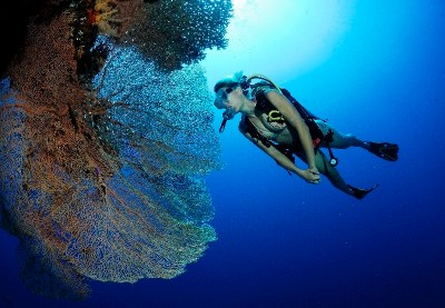 Diver Packages