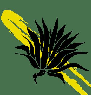 Semillas ancestrales Ecuador penco