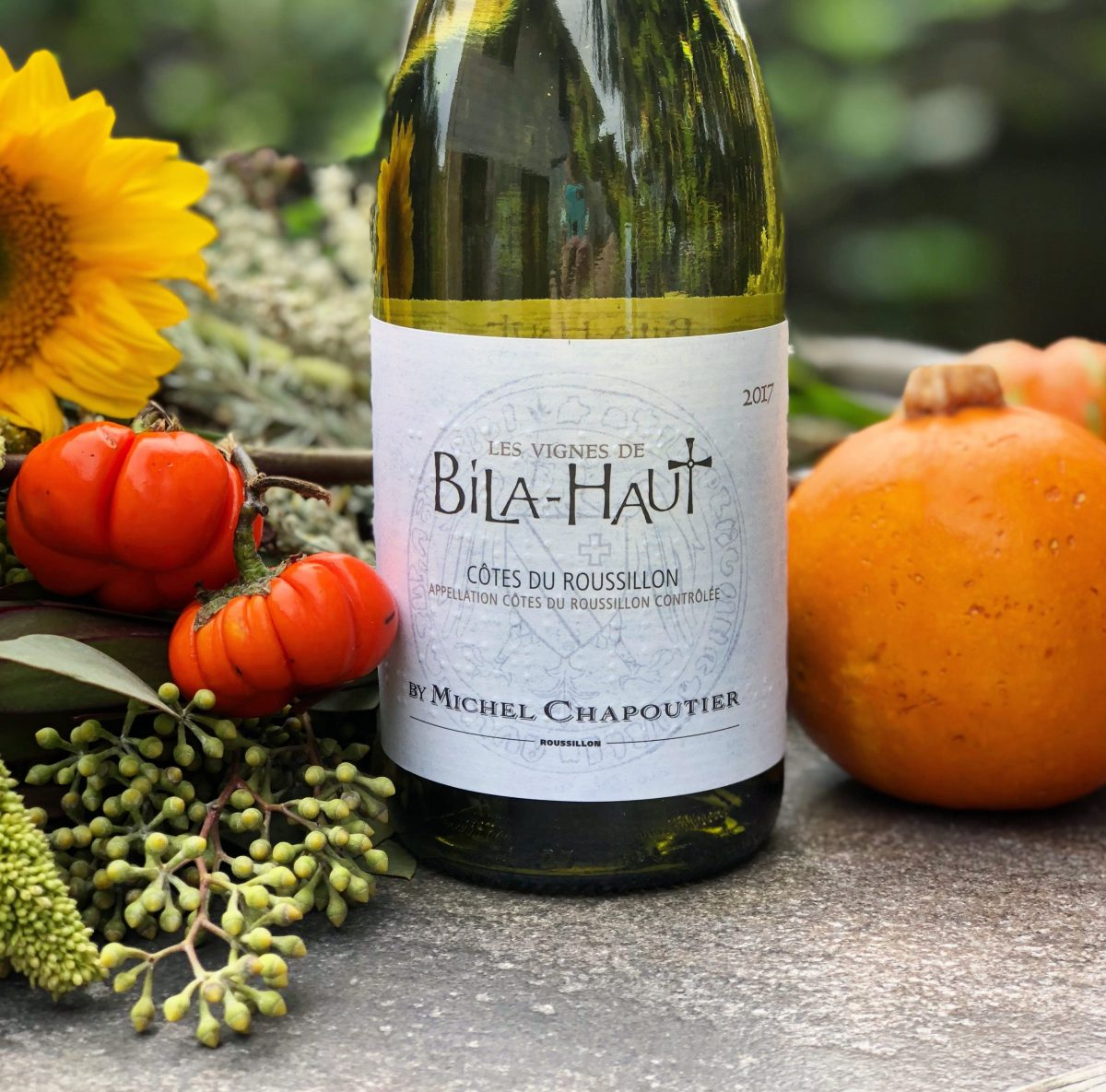 Fall Wine: What's in My Glass