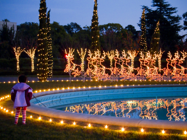 best holiday light displays in the bay area