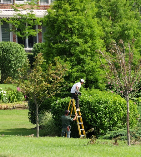 Tips For Selecting The Right Plainville Landscape Contractor For Design, Installation, And Maintenance