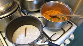 Sorbet and curry on the stove